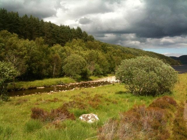 Glen affric gorgeous